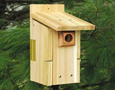 bluebird nest box house