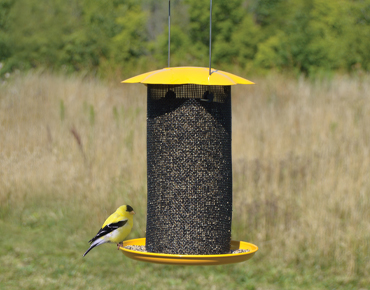 Nyjer Thistle Seed Feeder