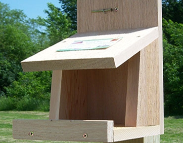 Robin nesting box house