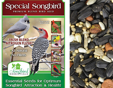 Special Songbird Bird Seed