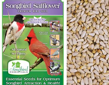 Songbird Safflower Seed