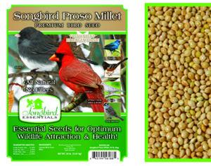 Songbird Proso Millet