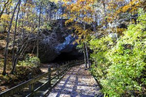 Rock Bridge Memorial State Park